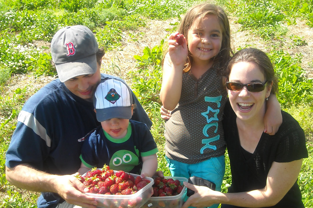 Autocueillette de fraises - La Ferme Genest